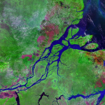 NASA satellite photo of the mouth of the Amazon River